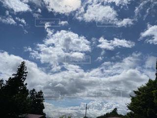 空の雲の群の写真・画像素材[4769589]