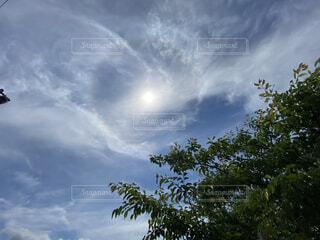 空の雲の写真・画像素材[4769597]