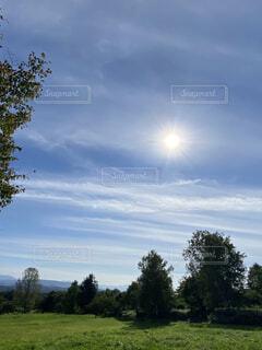 背景に木々のある大きな緑のフィールドの写真・画像素材[4789515]