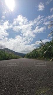 歩道から見た景色の写真・画像素材[4791079]