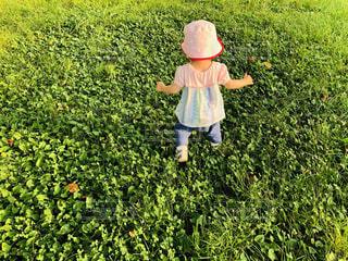 草の中に立っている小さな女の子の写真・画像素材[4771224]