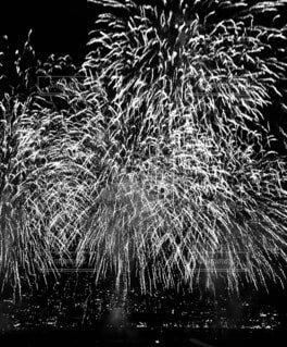 モノクロの花火の写真・画像素材[4771259]