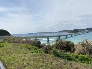 陸から海へ橋LET'S GO!!の写真・画像素材[4775848]