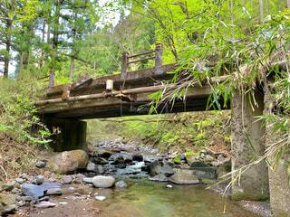 あの夏の日 一緒に歩いた田舎橋の写真・画像素材[4770041]