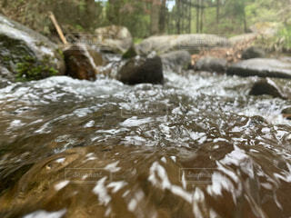川の流れに呑まれての写真・画像素材[4770044]