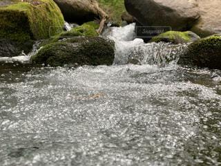 渓流 小さな水溜まりの写真・画像素材[4770049]