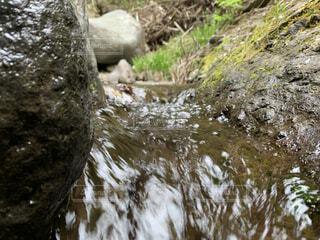 渓流の流れの写真・画像素材[4770047]