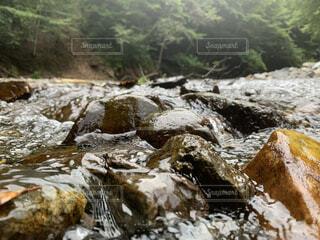 川の流れに揉まれている石の写真・画像素材[4770051]