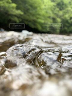 流れに揉まれての写真・画像素材[4770054]