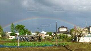 野原の上に虹をの写真・画像素材[4770016]