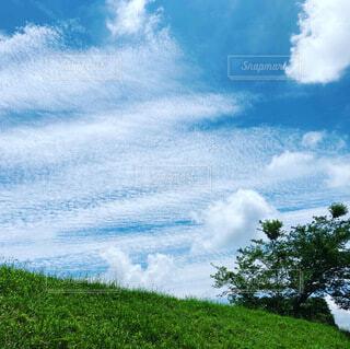 空を見上げたの写真・画像素材[4770333]