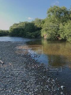 川の写真・画像素材[4770437]