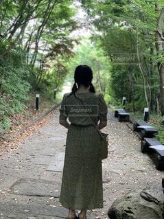 森での写真・画像素材[4770861]