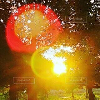 朝陽の花火の写真・画像素材[4771482]