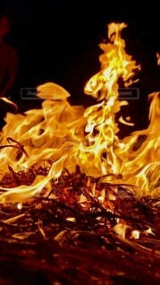 焚き火の世界の写真・画像素材[4795467]
