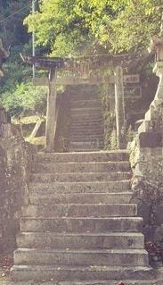 石段の上にある鳥居の写真・画像素材[4786635]