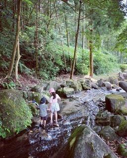川遊びする子供達の写真・画像素材[4777541]