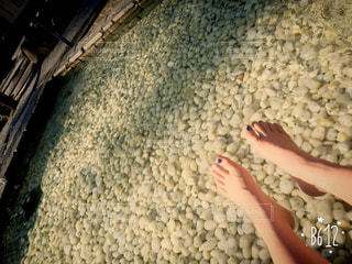 足の写真・画像素材[214471]