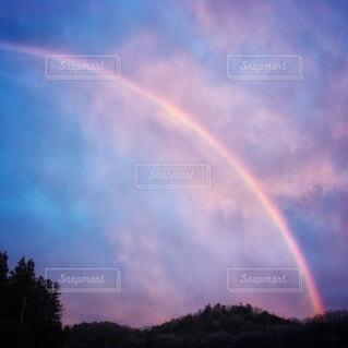 木々と虹の写真・画像素材[4784549]