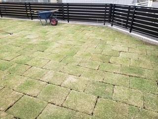 芝生を張たての庭の写真・画像素材[4788118]