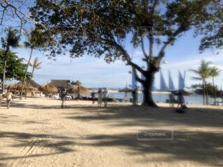 リゾートホテルのビーチの写真・画像素材[4858651]