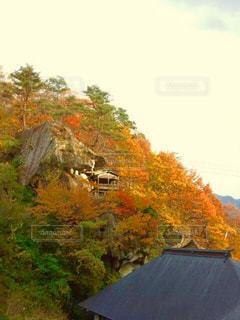風景 - No.216213