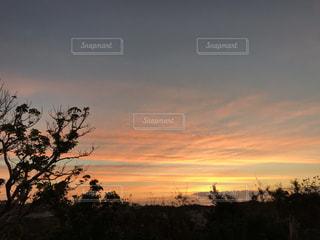 秋空の写真・画像素材[1604234]