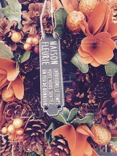 No.216007 植物