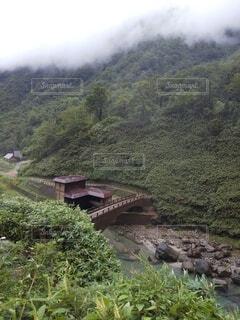 緑豊かな丘の中腹を通る電車の写真・画像素材[4821193]