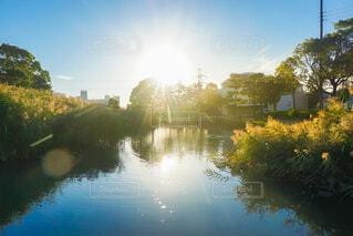 水面に反射する光の写真・画像素材[4918347]