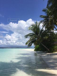 海の写真・画像素材[217702]