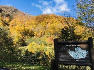 鬼無里の秋の写真・画像素材[4868428]