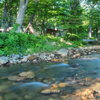 背景に水が入った庭の写真・画像素材[4812663]