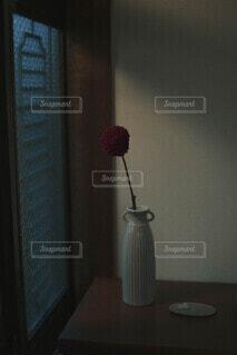 花の写真・画像素材[4832179]