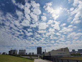 空を見上げたらの写真・画像素材[4816532]
