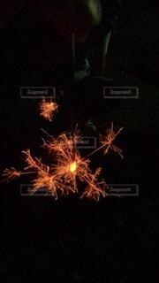 線香花火の写真・画像素材[4817200]