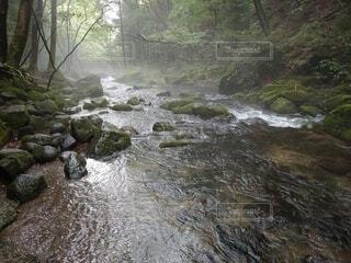 那須塩原乙女の滝の写真・画像素材[4823363]