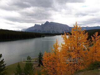 黄葉と湖の写真・画像素材[4825130]