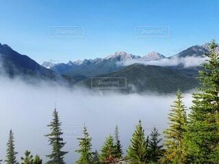 カナディアンロッキーの雲海の写真・画像素材[4825198]
