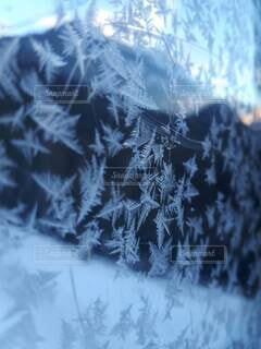 雪の結晶の写真・画像素材[4828786]