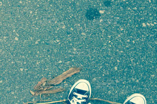靴 - No.301151
