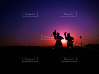 日没の前にトラフィック ライトの写真・画像素材[1158356]