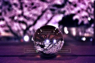 クリスタルボール越しの桜の写真・画像素材[2085361]