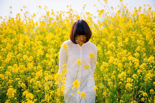 春 - No.413336