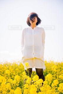春 - No.413343