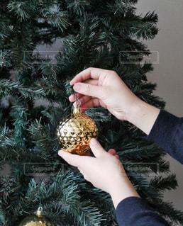 クリスマスツリー - No.851674