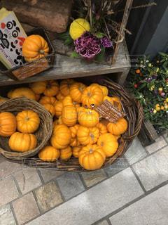 ハロウィン用のかぼちゃの写真・画像素材[1517321]