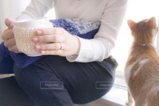 猫とリラックスの写真・画像素材[1590889]