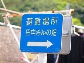 No.41710 風景
