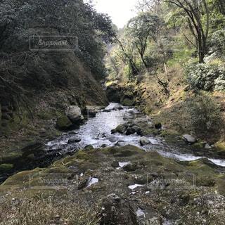 川の隣の丘の中腹の近くの写真・画像素材[4831699]